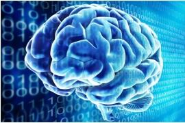 Điện não đồ (electroencephalogram, EEG)